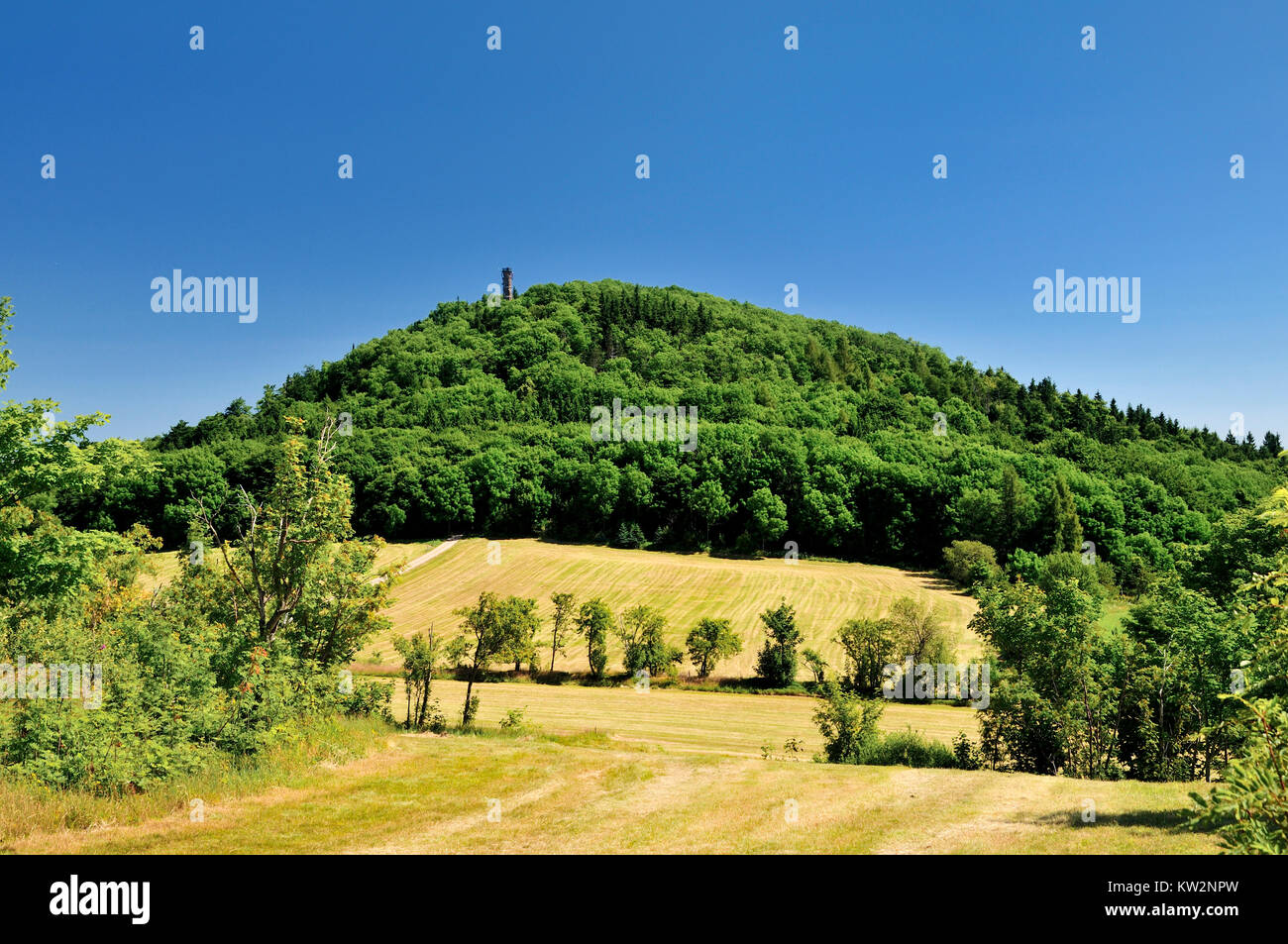 Mountain Geising with observation tower, Osterzgebirge, Geisingberg mit Aussichtsturm - Stock Image