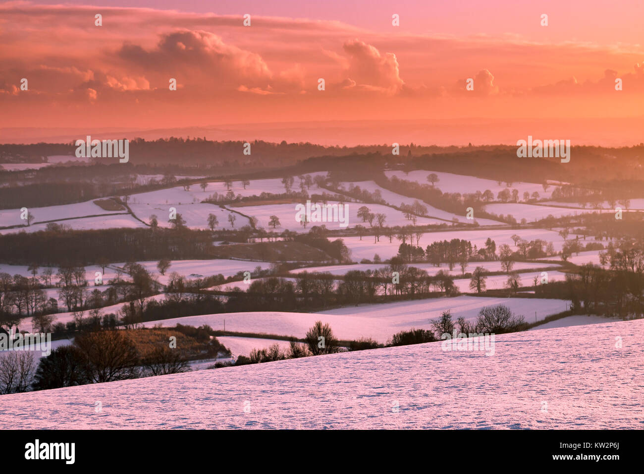 North Downs in winter. Stock Photo