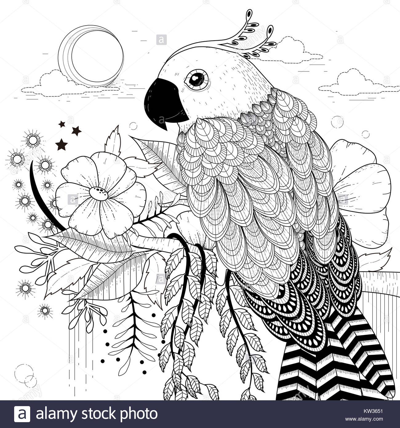 Lovely Parrot Coloring Page In Stock Photos & Lovely Parrot Coloring ...