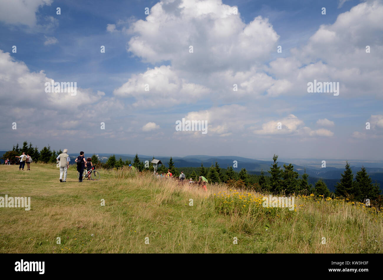 View plateau of the snowy head, Thuringian wood, Aussichtsplateau des Schneekopf, Thueringer Wald - Stock Image