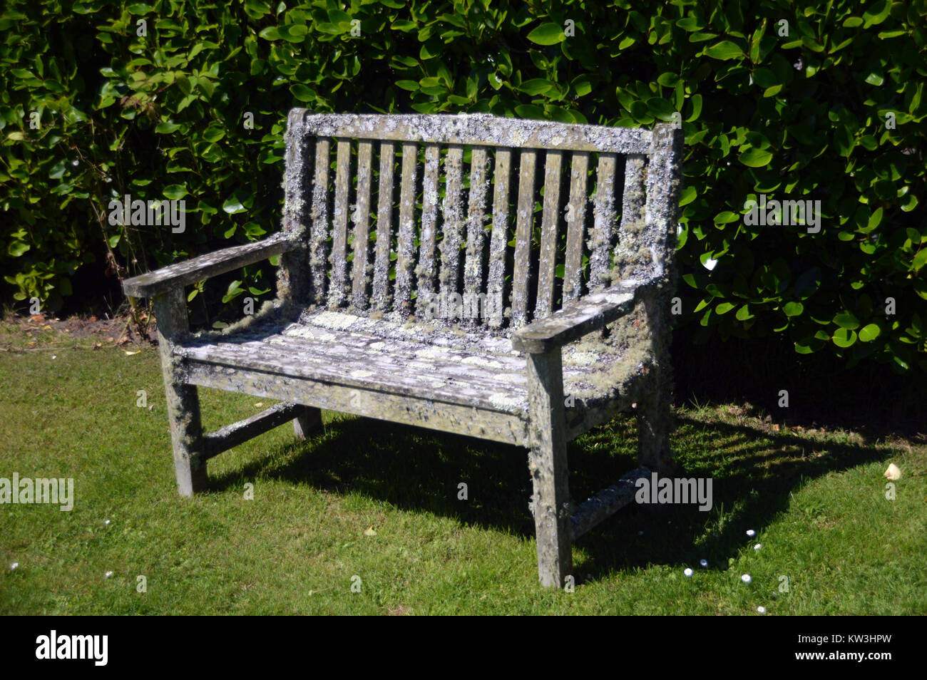Enjoyable Old Moss Covered Wooden Bench Near The Veg Fruit Gardens Gmtry Best Dining Table And Chair Ideas Images Gmtryco
