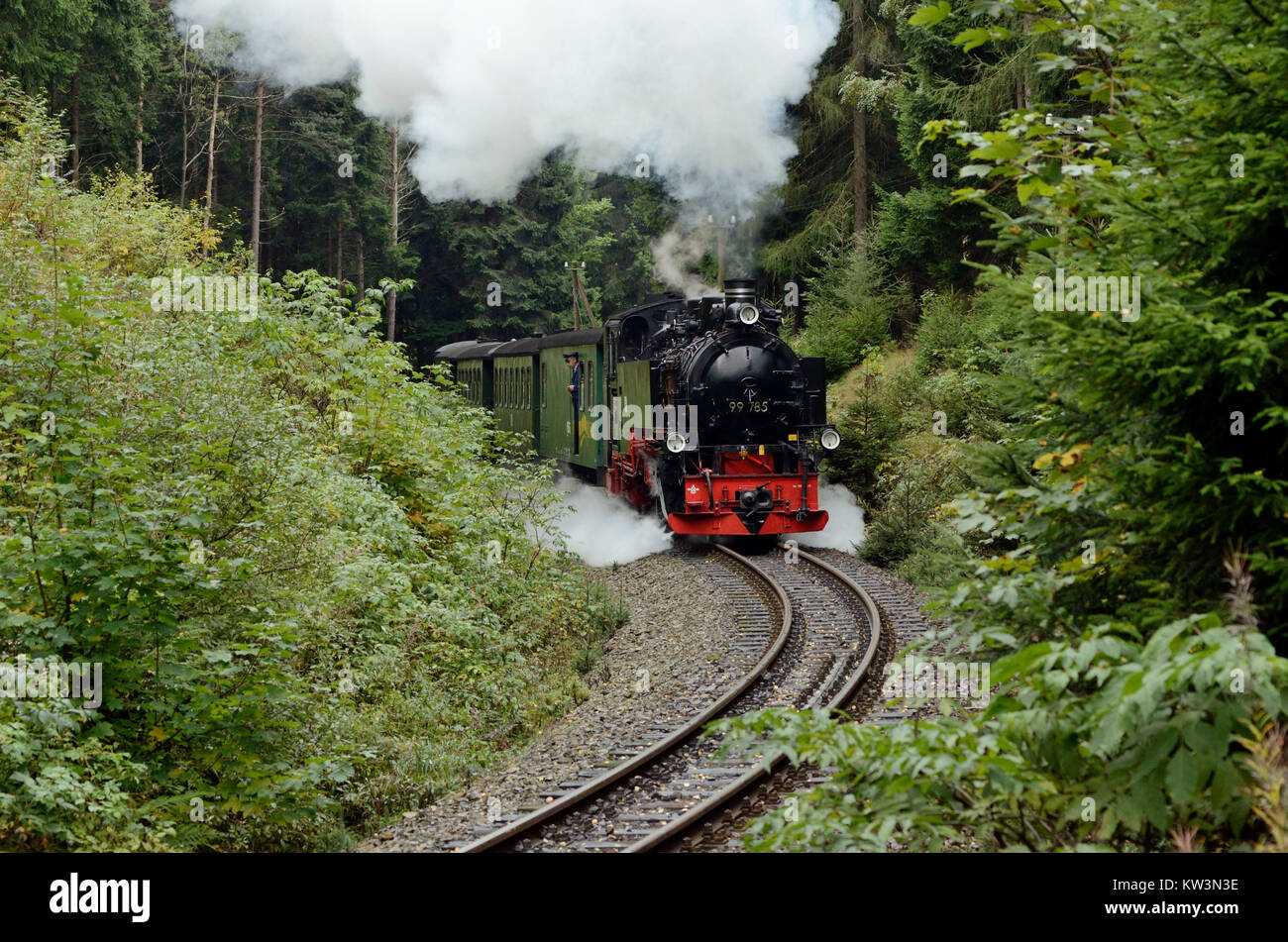 The middle Erzgebirge, Fichtelbergbahn in the increase with Kretscham Rothensehma, Mittleres Erzgebirge, Fichtelbergbahn - Stock Image