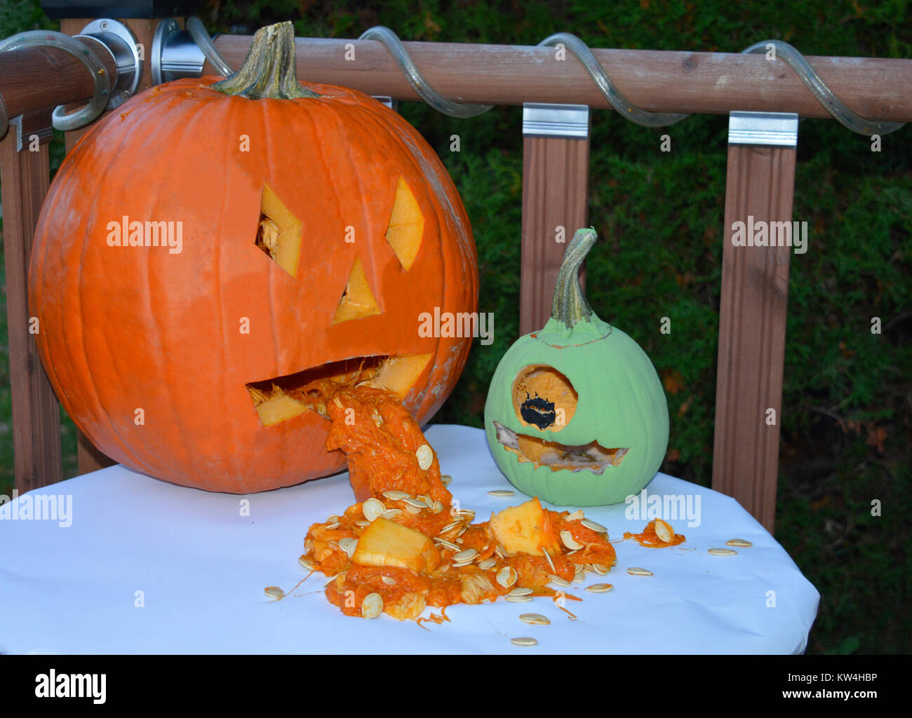 a couple of funny halloween pumpkin buddies sitting on a table stock