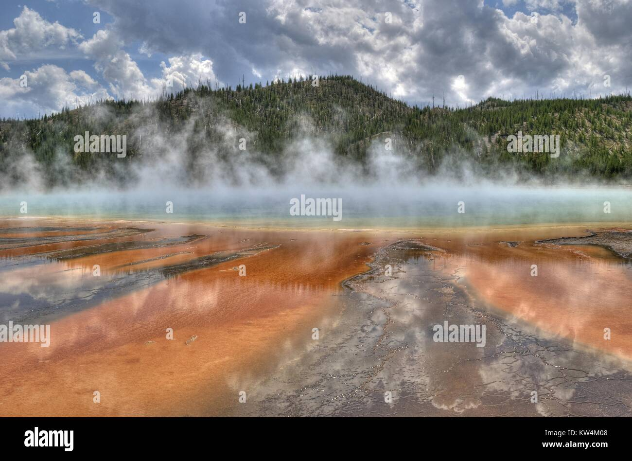 Grand Prismatic Spring and the thermophiles living within it, Yellowstone National Park, Wyoming, August, 2013. - Stock Image
