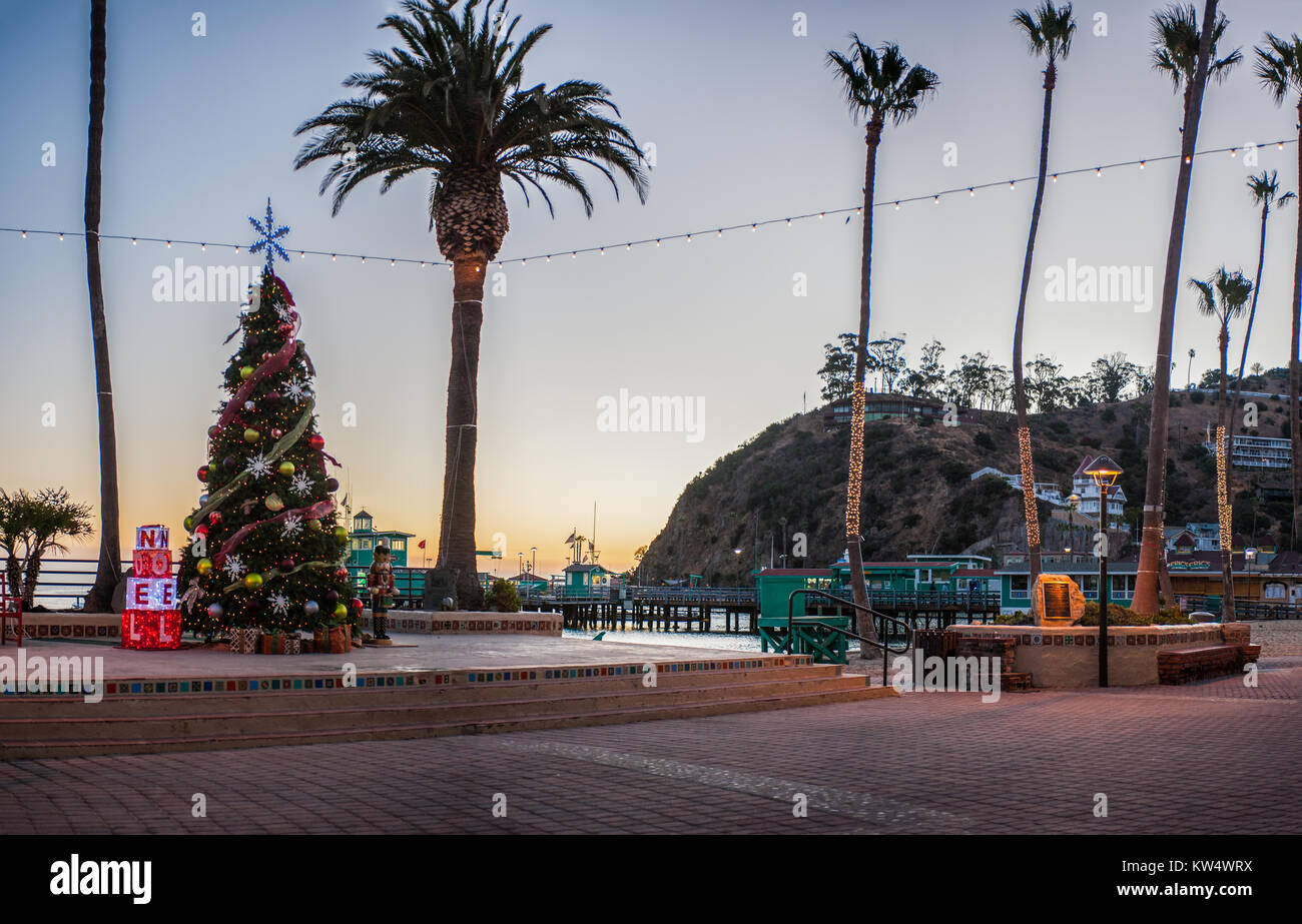 avalon city beach with large christmas tree and lighted palms during holiday season stock