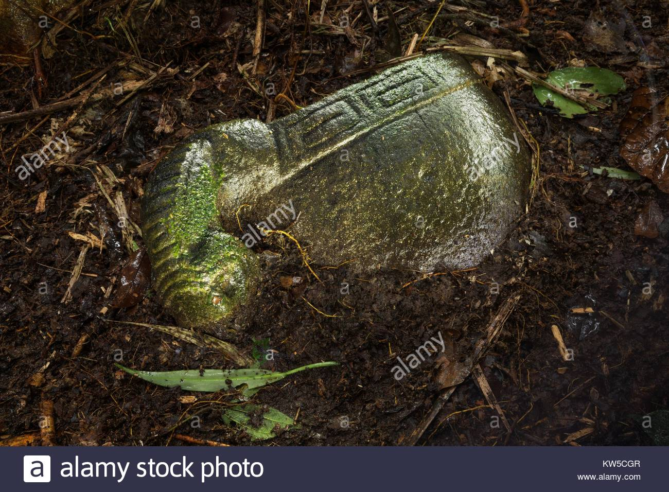 A carved stone vessel from a little-known pre-Columbian culture in Honduras awaits excavation. - Stock Image