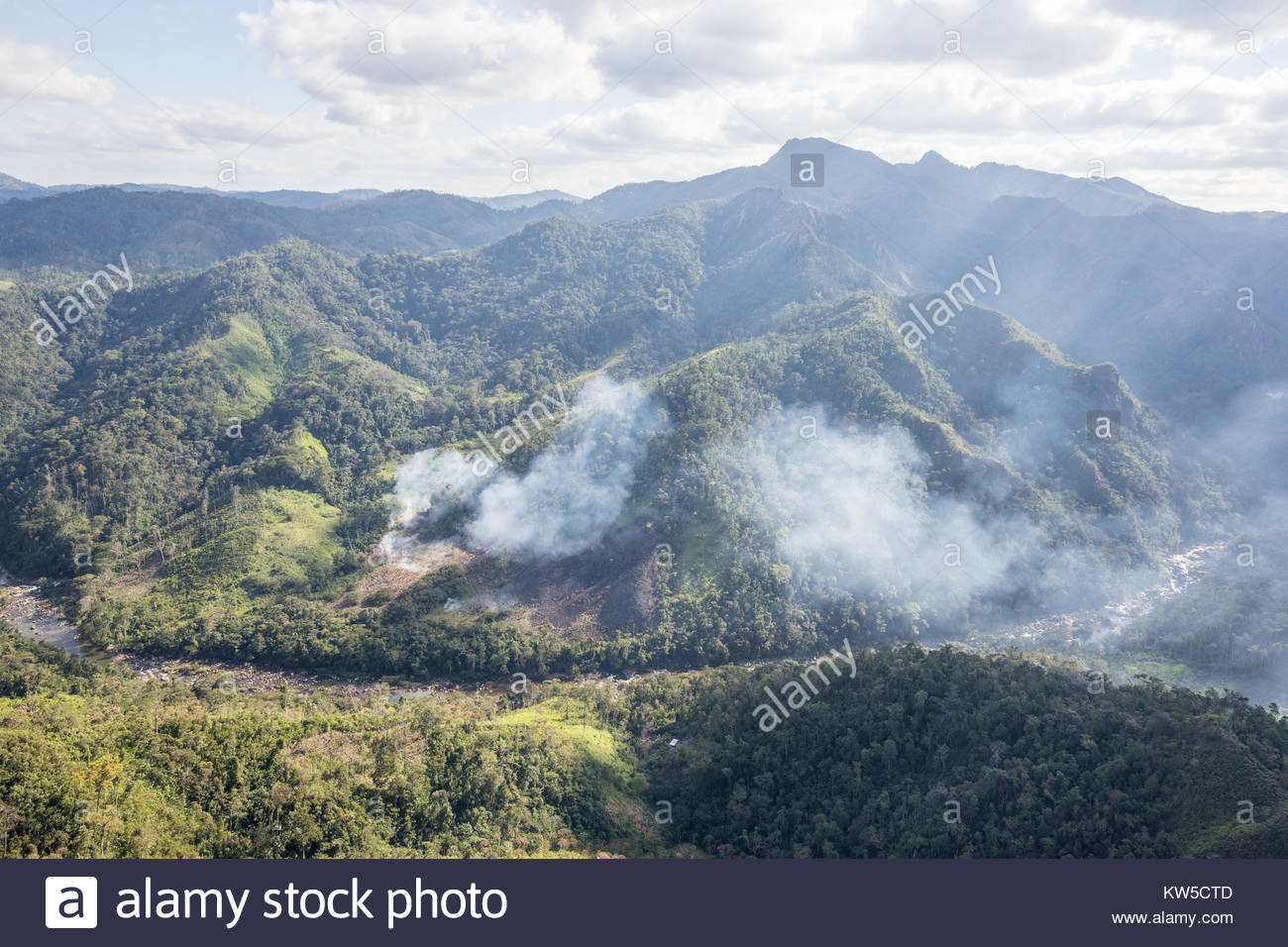 Deforestation in Honduras may be the largest threat to lost cities hidden within the rainforest. - Stock Image
