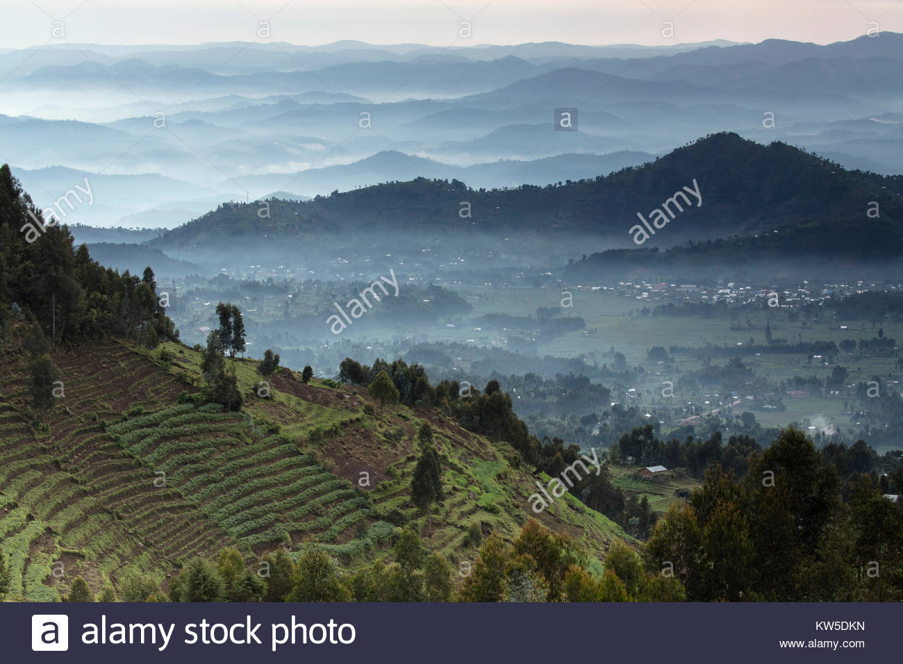 The farmland of northern Rwanda. - Stock Image