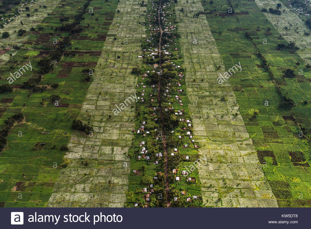 Aerial view of the farmlands in northern Rwanda. - Stock Image