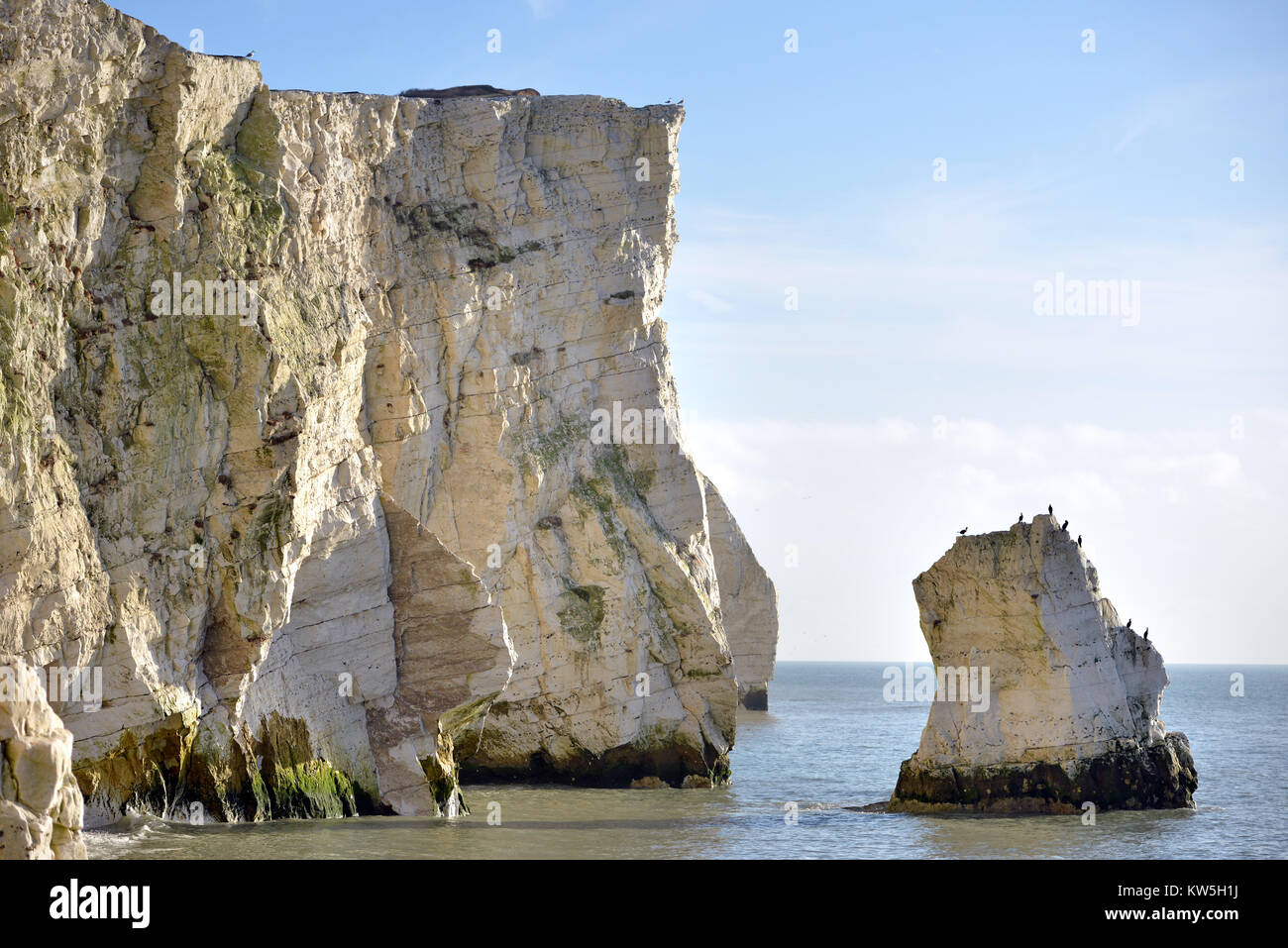 Chalk stack at Slash Point, Seaford, East Sussex - Stock Image