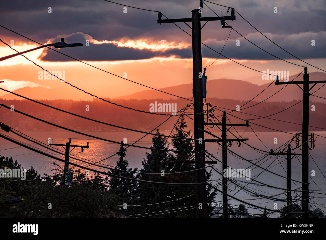 Powerlines and telephone poles in veiw of Puget Sound, Seattle, Washington, USA - Stock Image