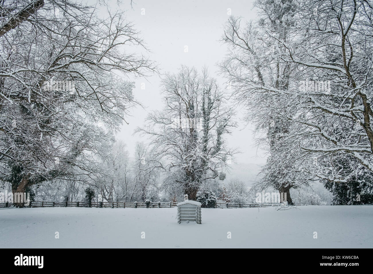 Beehive sat in the snowy Chilterns - Stock Image