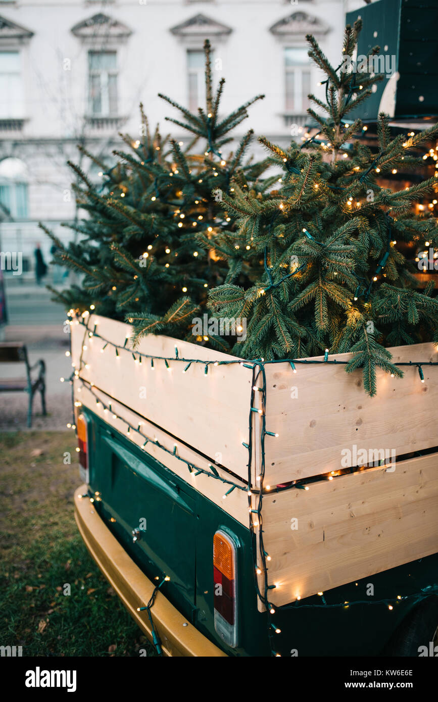 Christmas trees in back of old pickup - Stock Image