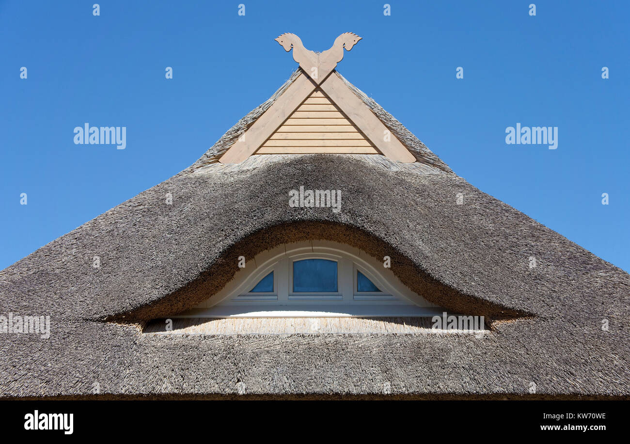 Gable of a thatched-roof at the village Ahrenshoop, Fishland, Mecklenburg-Western Pomerania, Baltic Sea, Germany, - Stock Image