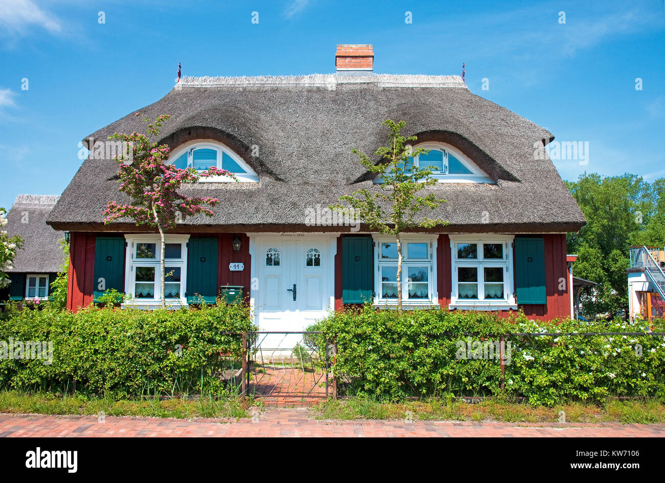 Thatched-roof house at Wieck at Darss, Fischland, Mecklenburg-Western Pomerania, Baltic sea, Germany, Europe Stock Photo