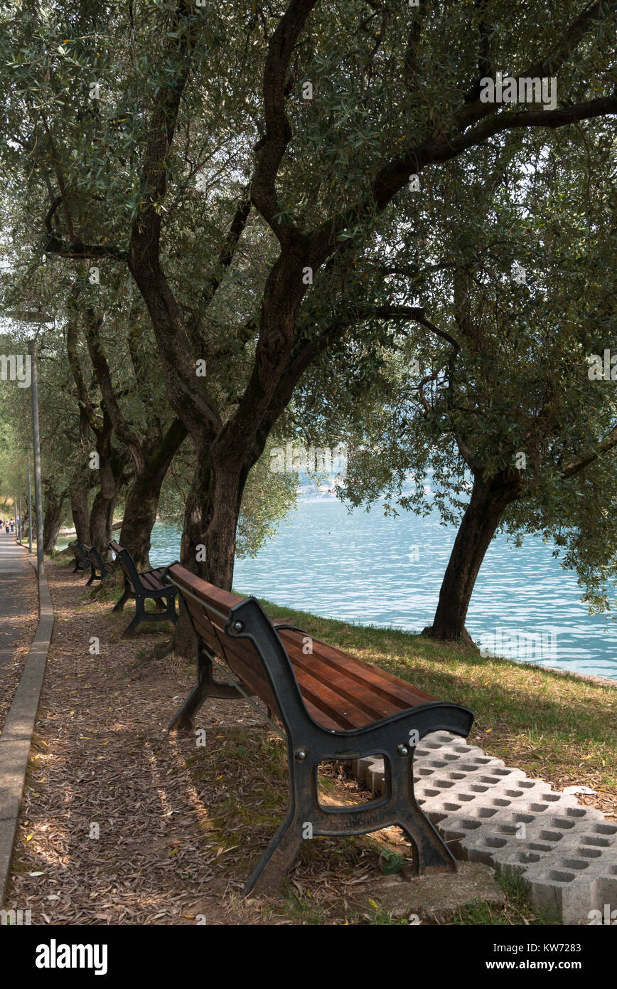 A row of benches in the shade by Lake Iseo in Italy - Stock Image