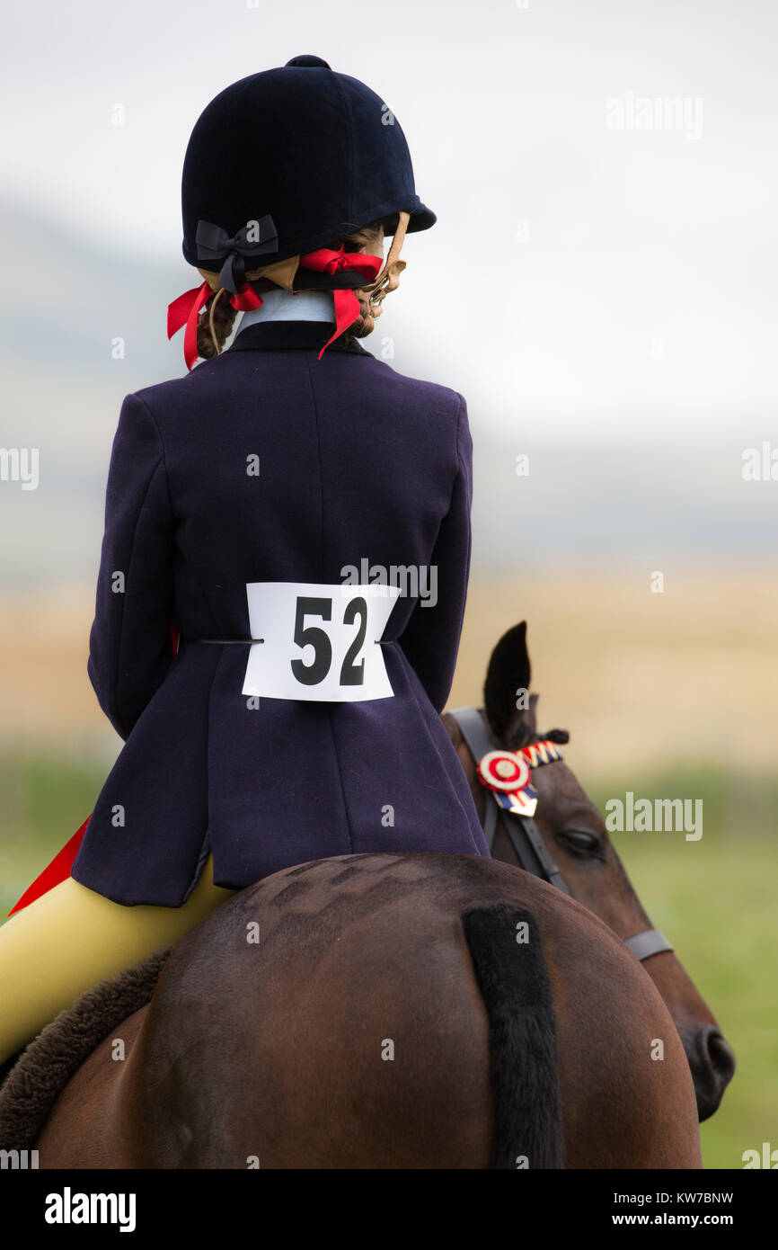 Pony show at Appleby show, Appleby-in-Westmorland, Cumbria, August 2017 - Stock Image