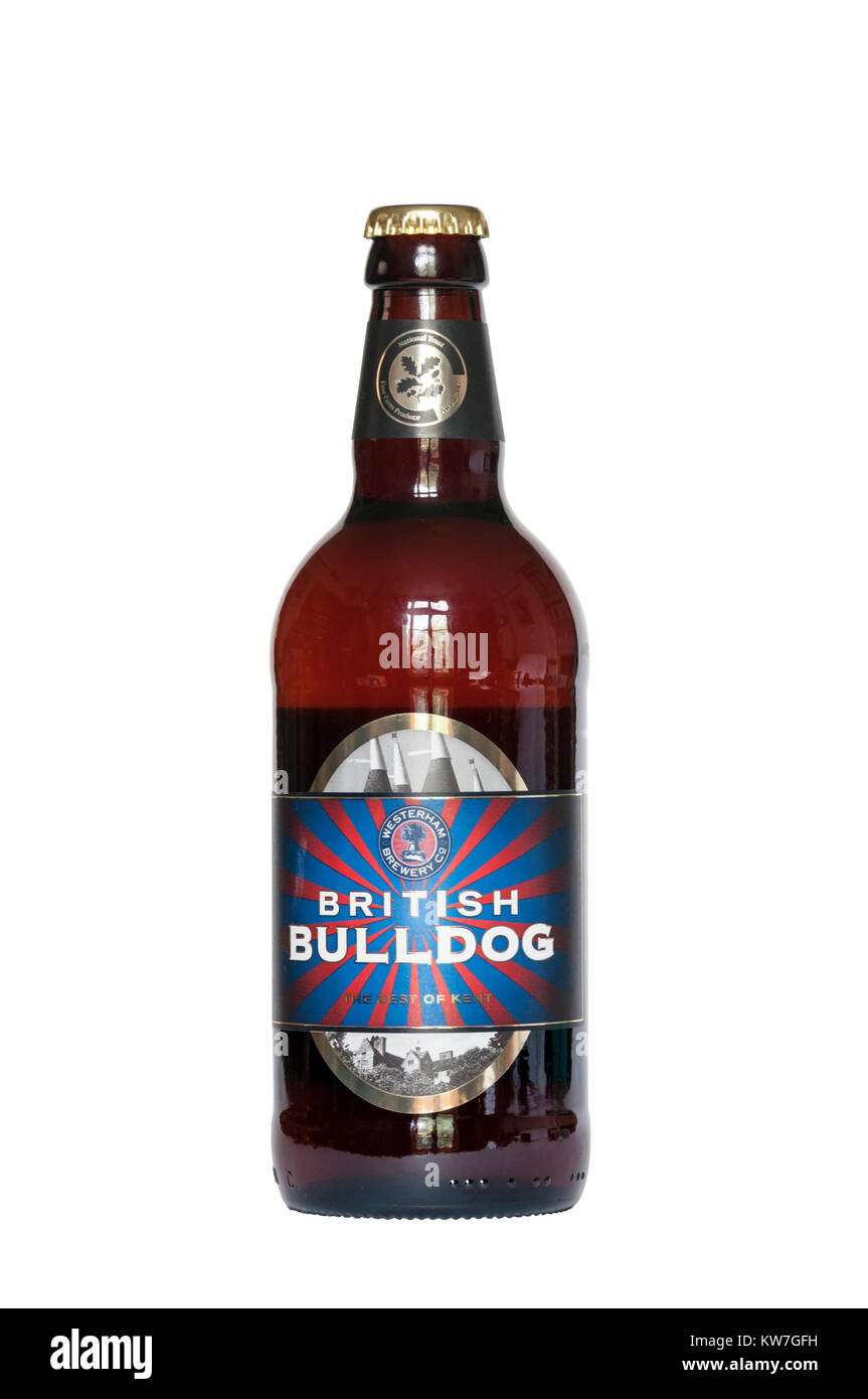 British Bulldog bitter by Westerham Brewery Co is described on their website as 'best bitter in the traditional - Stock Image