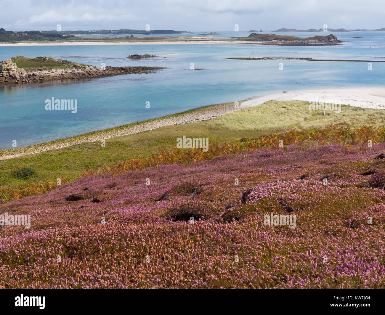 River estuary running into the ocean - Stock Image