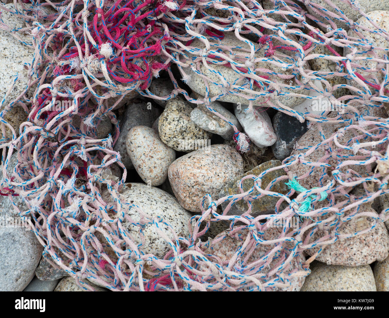 Stones on a beach covered by netting - Stock Image