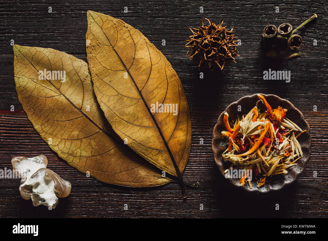 Autumn Collection of Dried, Pressed Leaves, Straw Grass, Flower Petals and Seed Pods on Dark Table - Stock Image