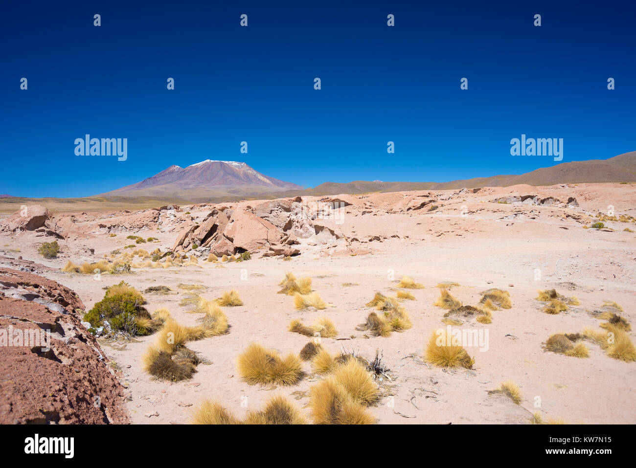 Rocky desert and steaming volcano in the distance, on the Andean Highlands, among the most important travel destination - Stock Image