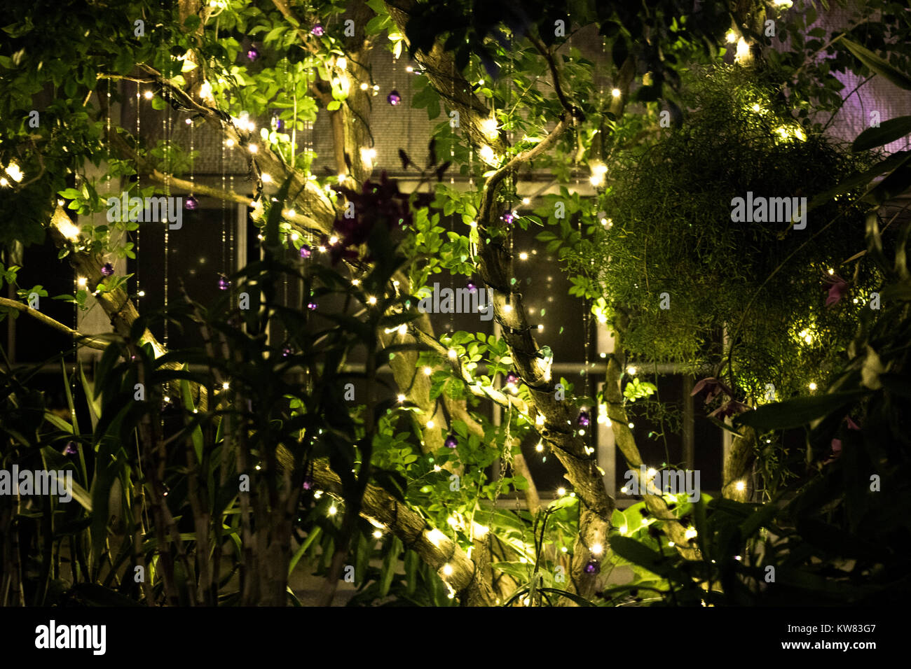 Magical Fairy Tale Garden with Lights - Stock Image