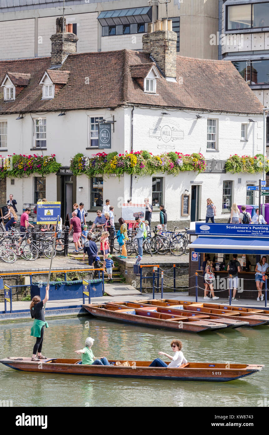 Punts on the Mill Pond in Cambridge, UK, with The Mill free house public house pub in the backgrouns - Stock Image