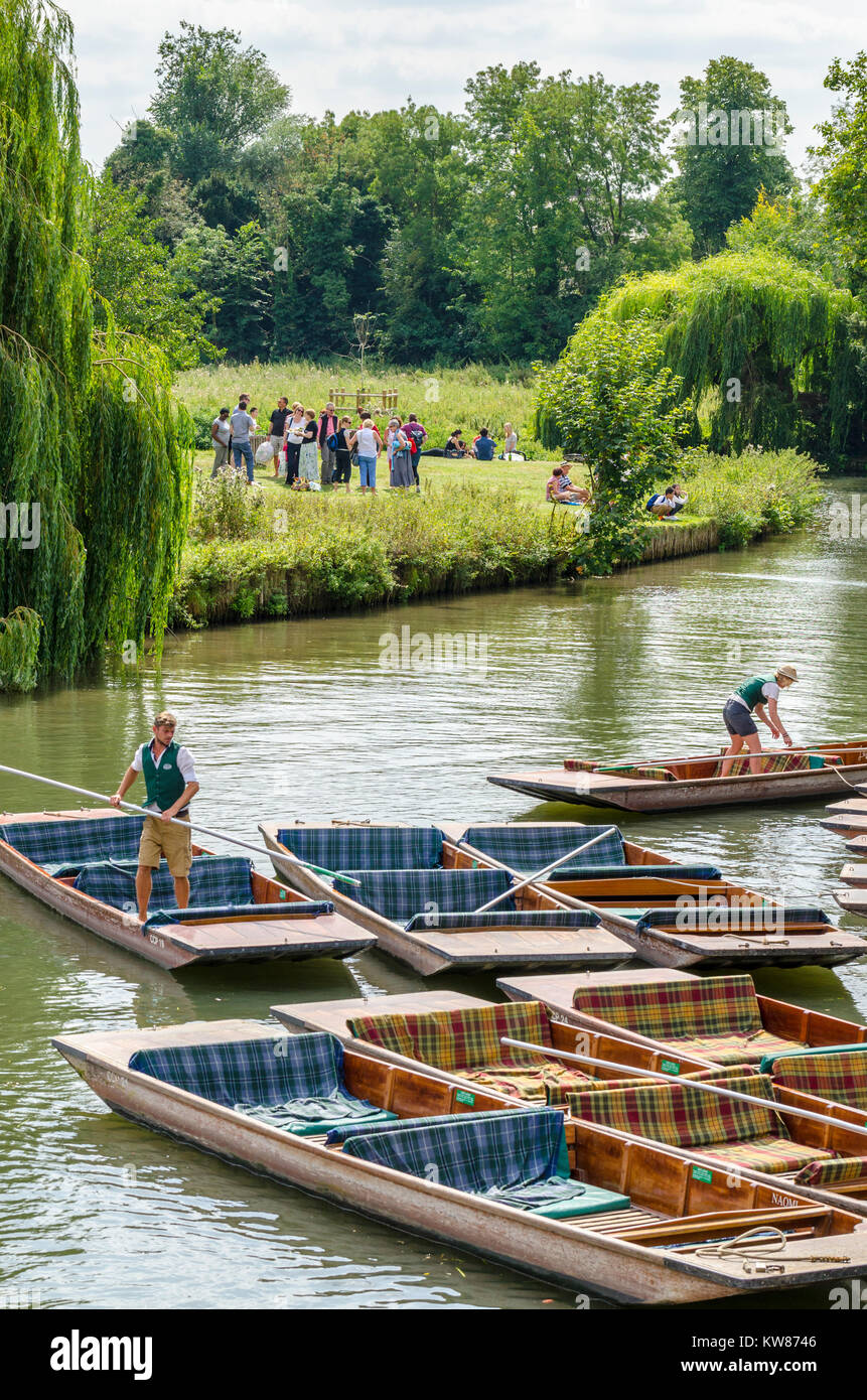 Empty punts on Mill Pond in the summer, Cambridge, UK - Stock Image