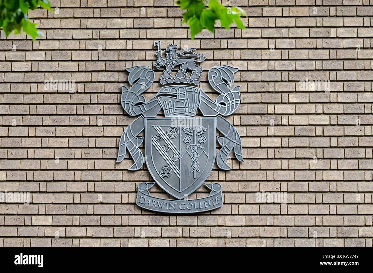 Darwin College, University of Cambridge, crest, coat of arms on the side of a building, Cambridge, UK - Stock Image