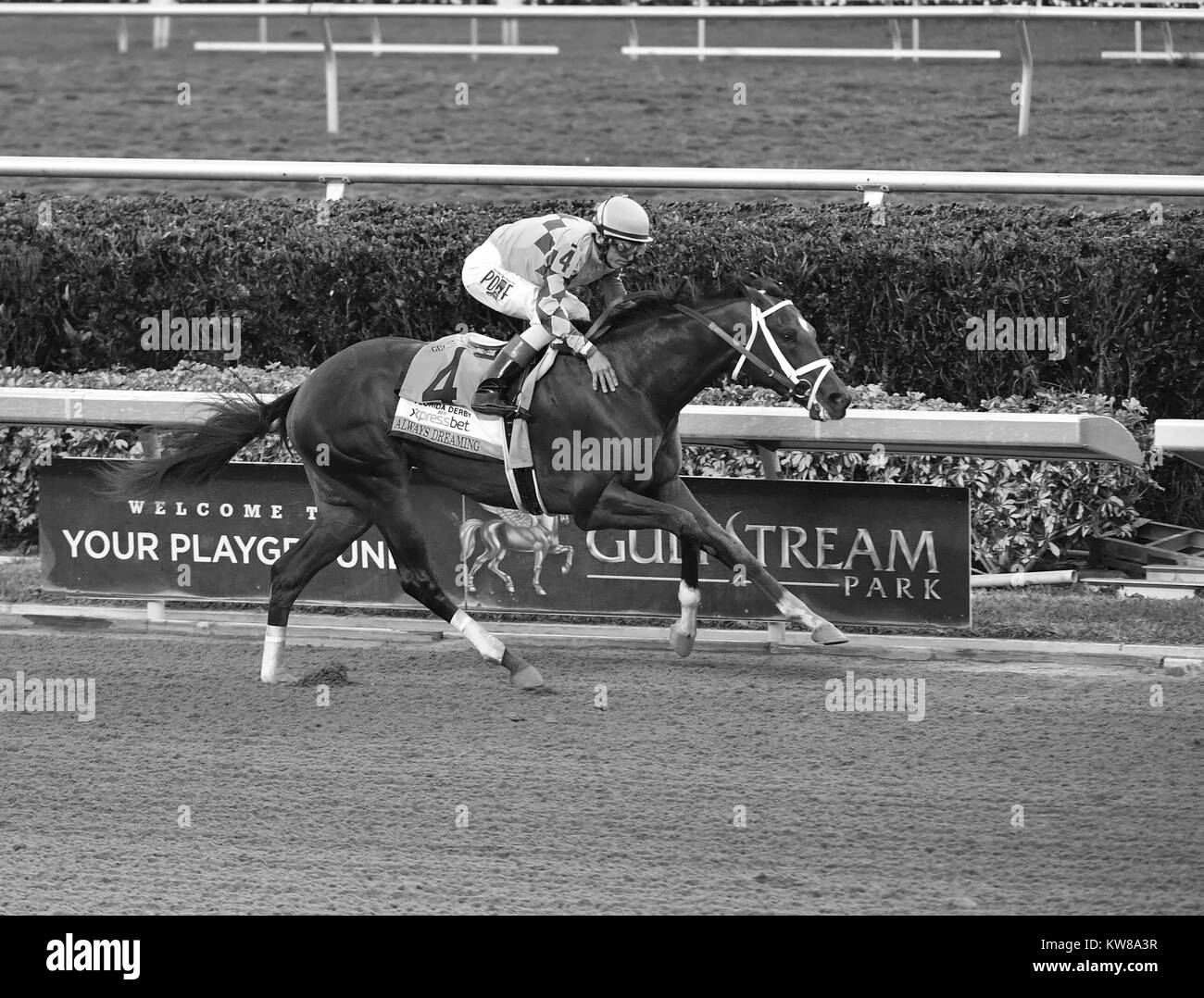 HALLANDALE, FL - APRIL 01: FILE PHOTO - Always Dreaming (#4) owned by Anthony Bonomo and Brooklyn Boyz Stables gets - Stock Image