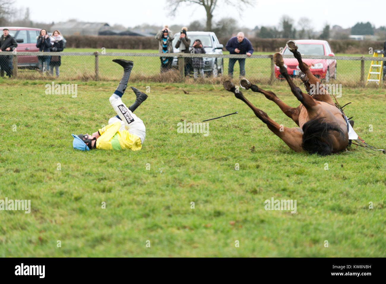 Cambridgeshire, UK. 31st December, 2017.  Johnny and J Dawson, a horse and rider fall at the last fence in the Cambridgeshire Stock Photo