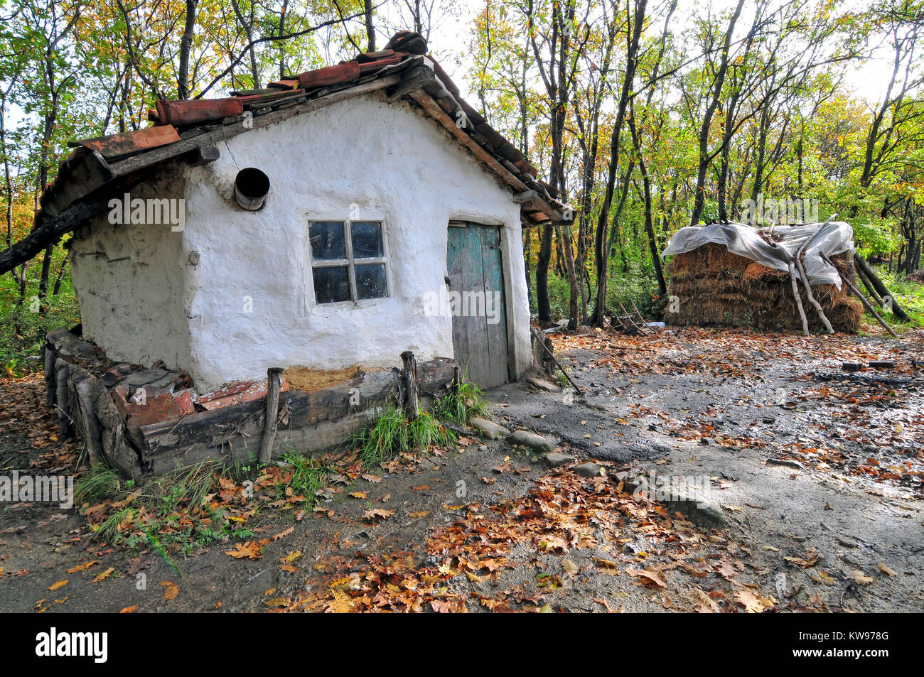 Woodsman S White House In Forest Stock Photo Alamy