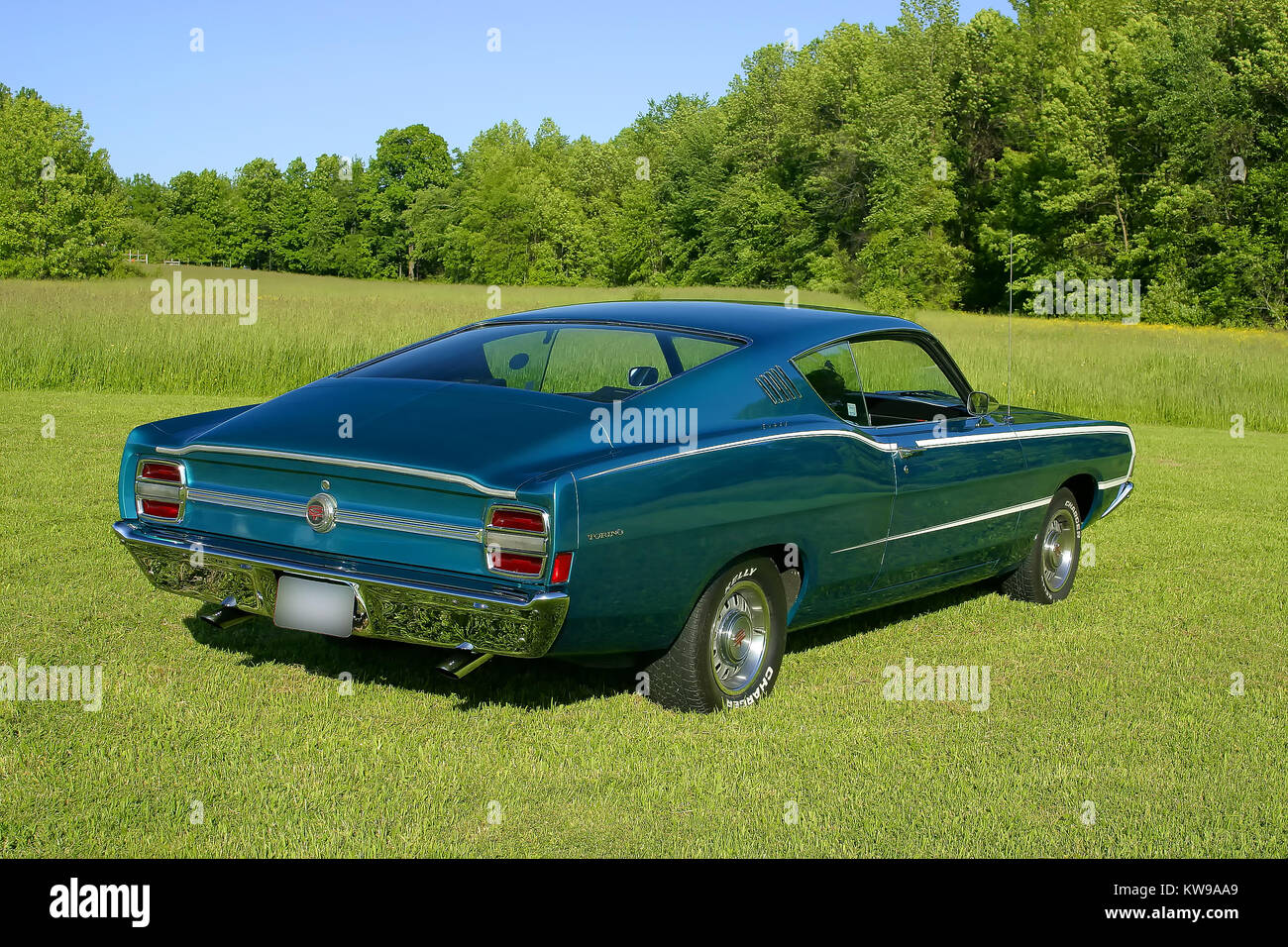 1968 Ford Torino on Grass Stock Photo: 170465409 - Alamy