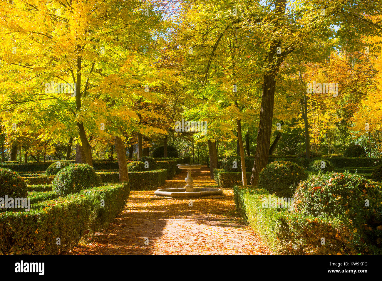 La Isla gardens in Autumn. Aranjuez, Madrid province, Spain. - Stock Image