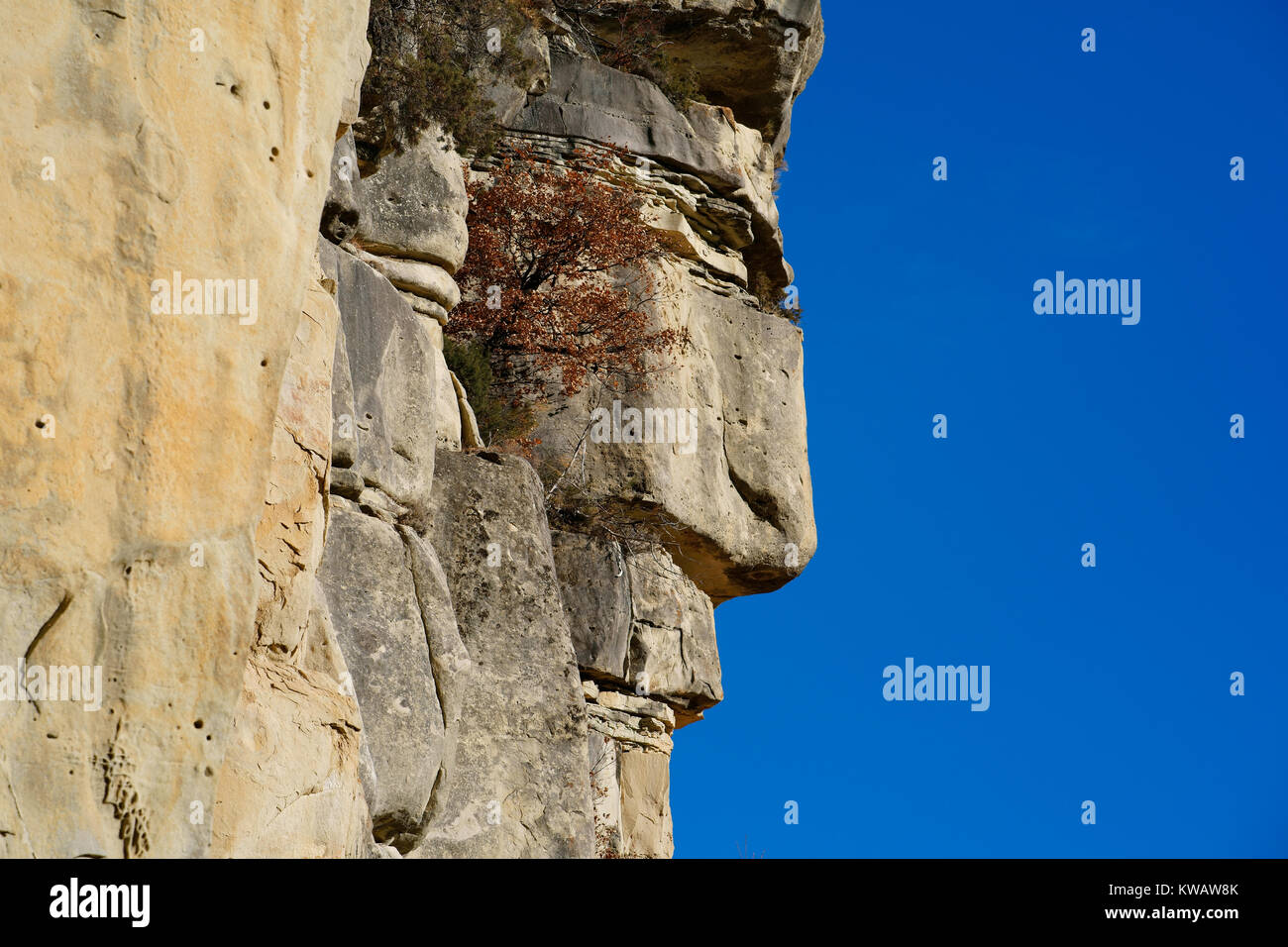 AN ABSOLUTELY NATURAL SANDSTONE ROCK FORMATION LOOKING LIKE A MAN'S PROFILE. Annot, Alpes de Haute-Provence, - Stock Image