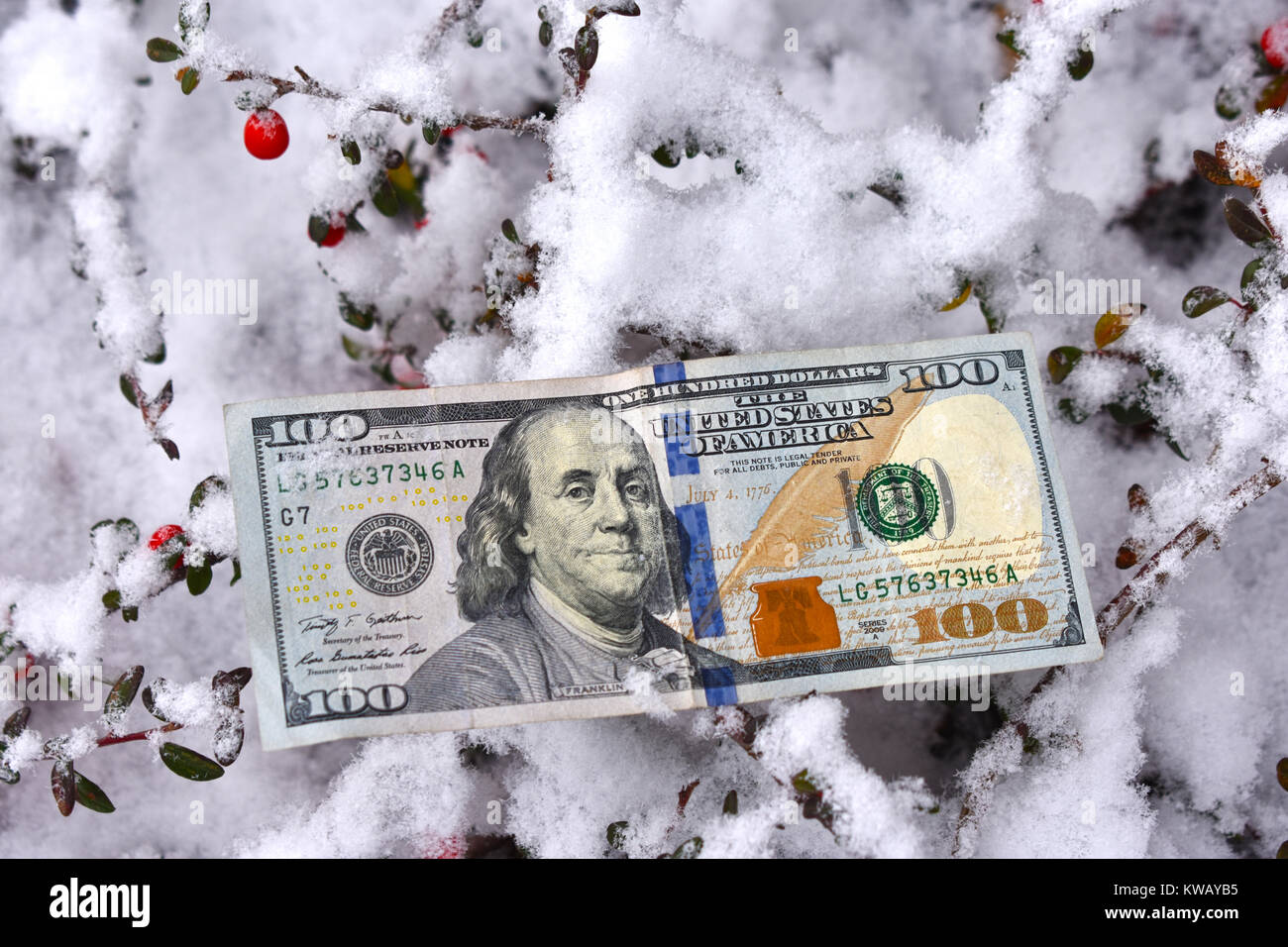 U.S. One Hundred dollar bill on the ground in the snow - concept of healing costs, winter storms, fuel shortage, - Stock Image