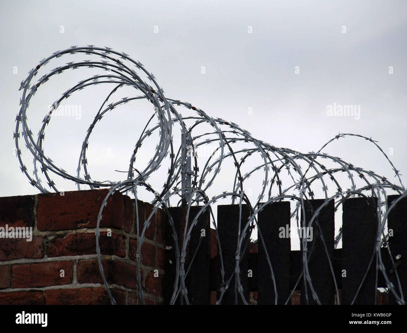 Coiled barbed wire on top of brick wall Stock Photo: 170506358 - Alamy