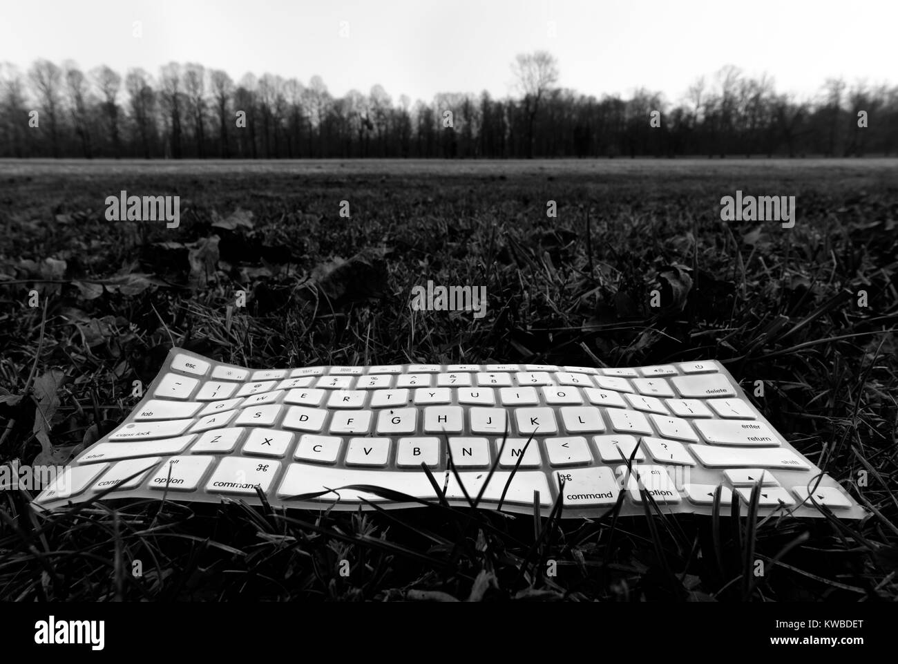 Computer keyboard lying on a lawn - Stock Image