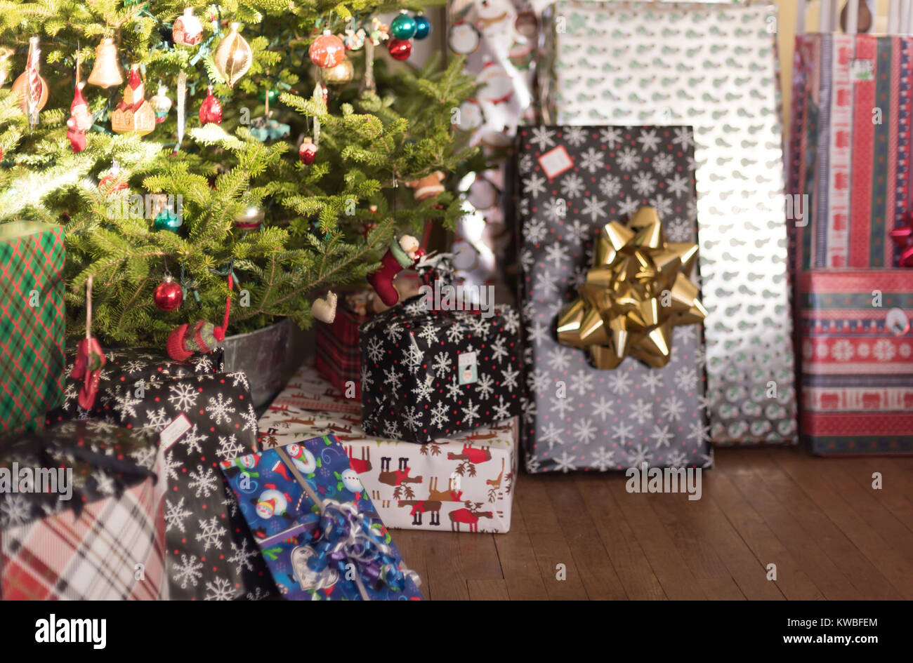 presents wrapped up sitting under tree on Christmas morning - Stock Image