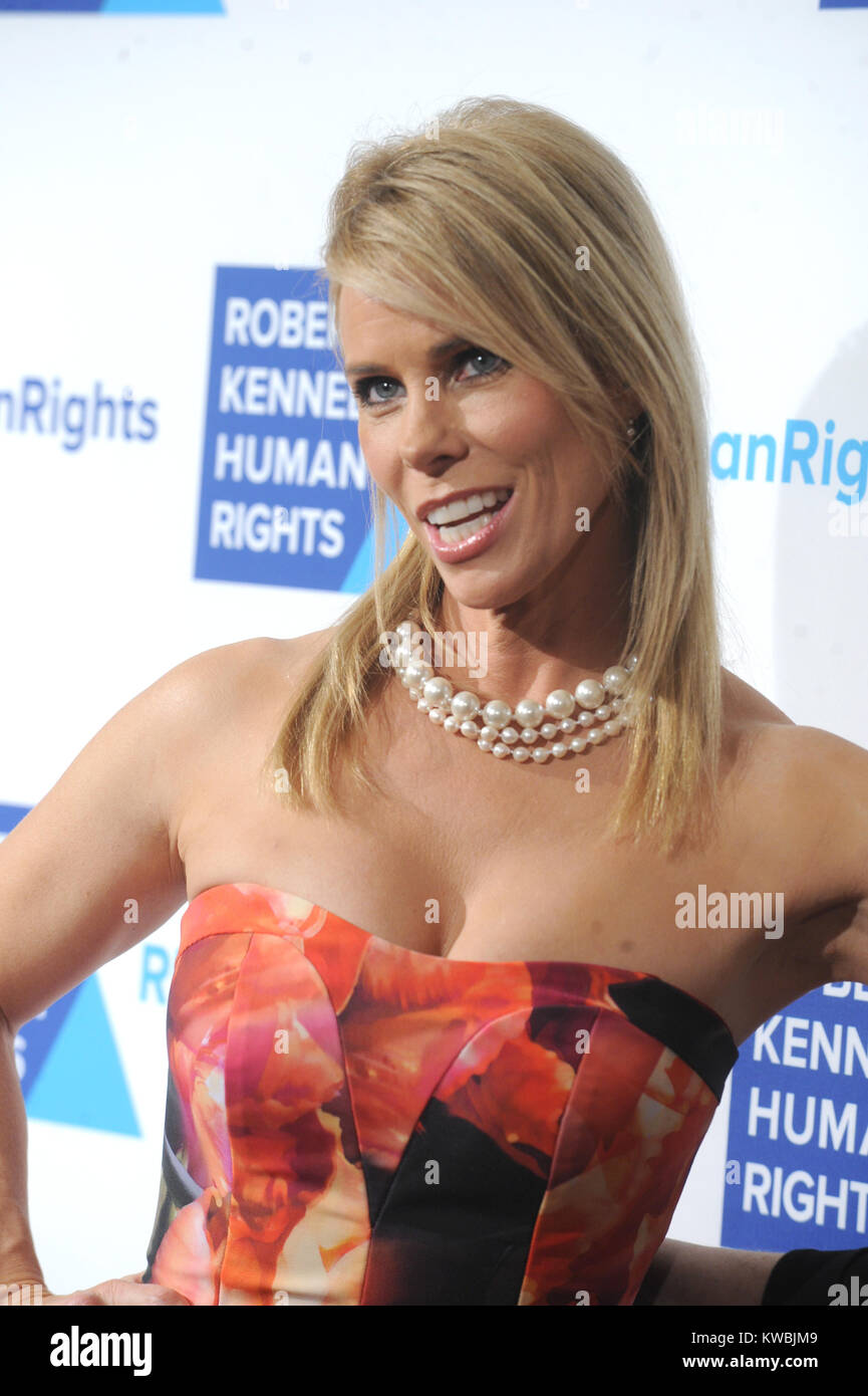NEW YORK, NY - DECEMBER 16:  Cheryl Hines attends the 2014 RFK Ripple Of Hope Gala at New York Hilton on December - Stock Image
