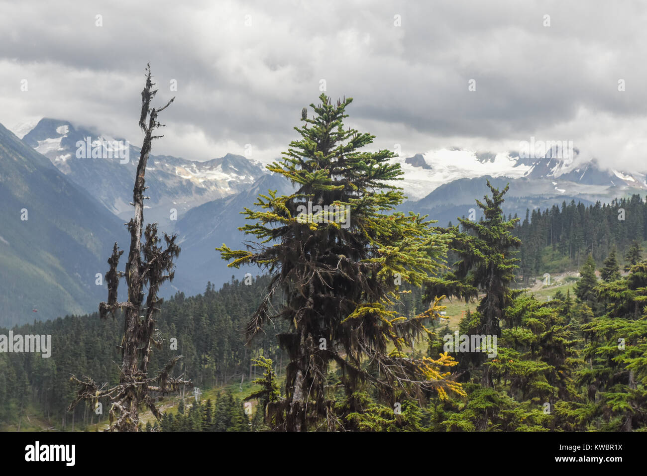 Clouds and fog create changing weather landscapes for skiing and mountain bikers on the Whistler Blackcomb mountains Stock Photo