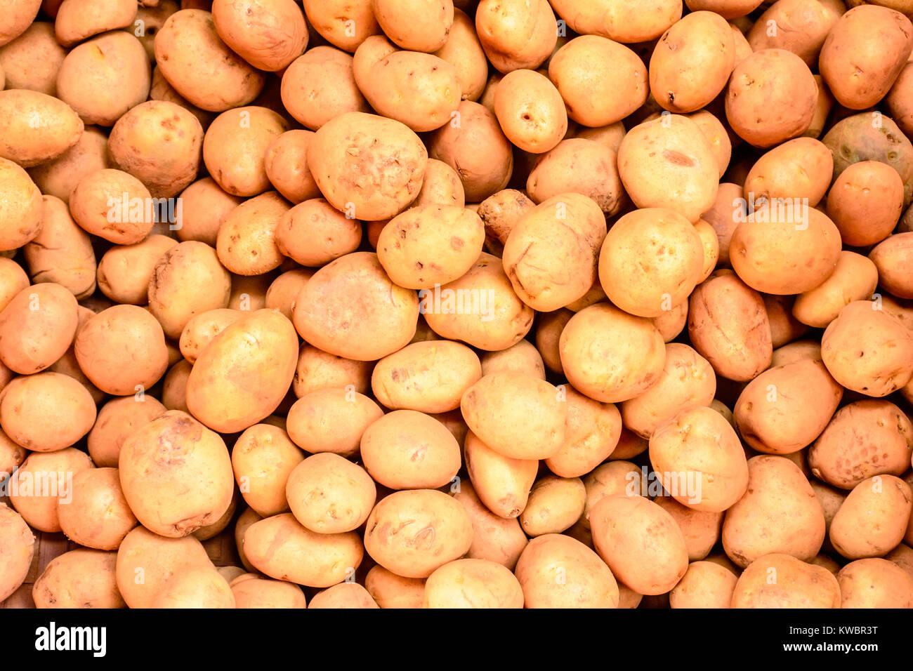 photo of raw material of potato - Stock Image