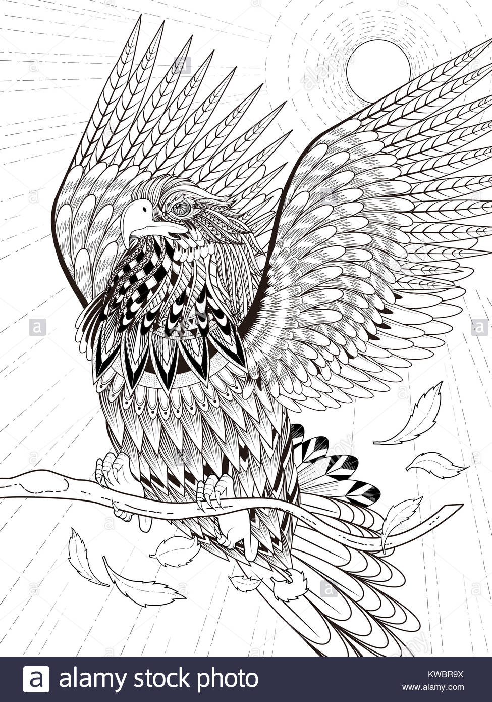 imposing flying eagle coloring page in exquisite line Stock Photo ...