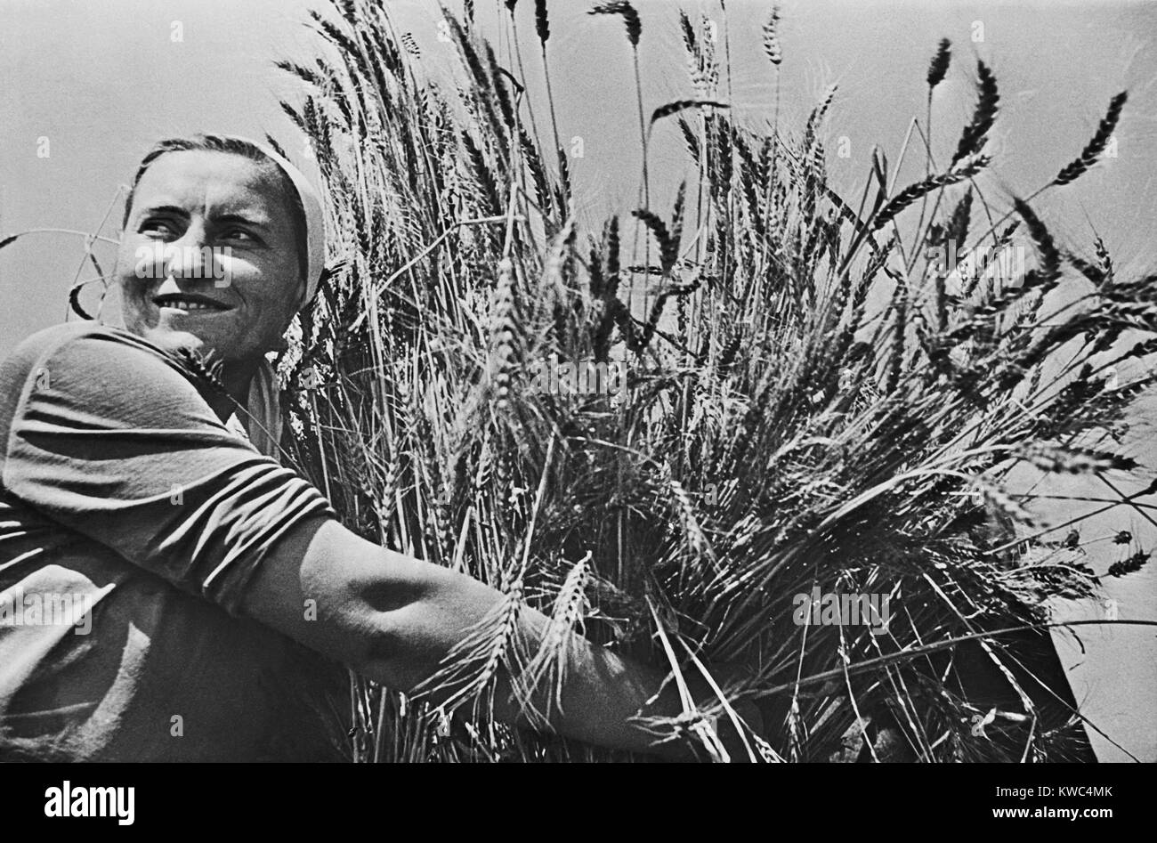 Woman collective farmer with newly harvested wheat. Ca. 1935-40. Near Krasnodar, USSR, (BSLOC_2015_2_255) - Stock Image