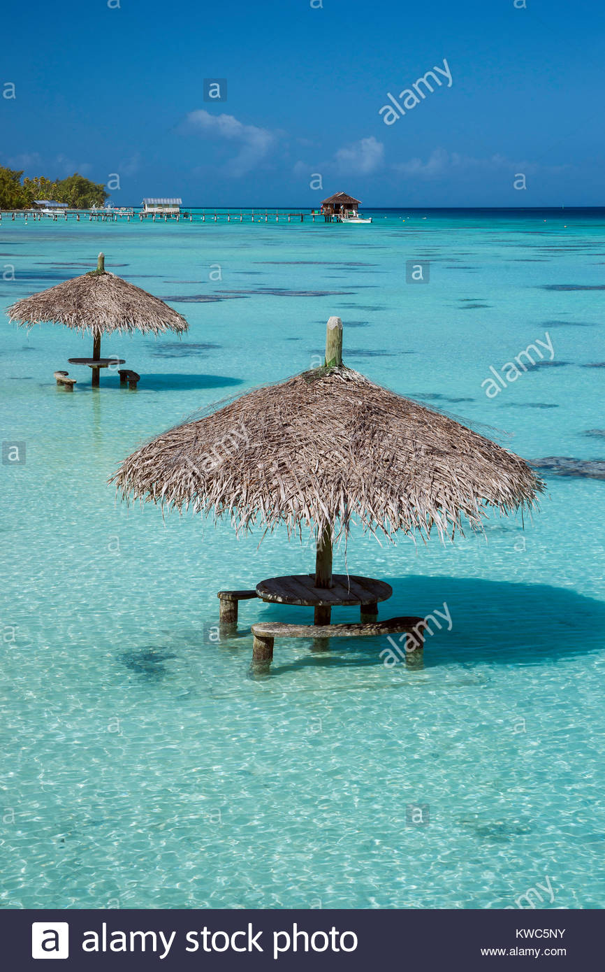 French Polynesia : Fakarava Pearl Havaiki Stock Photo