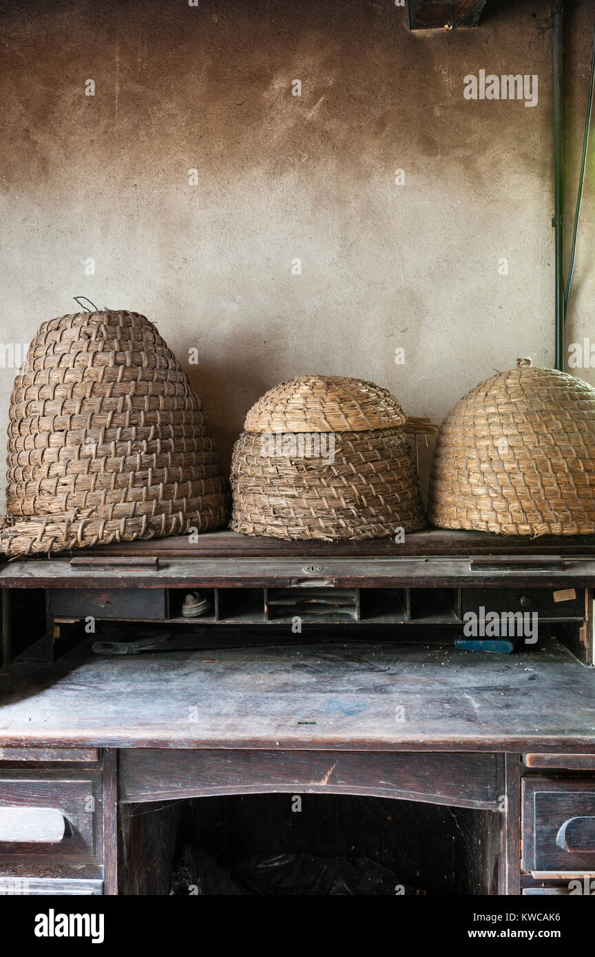 The Lost Gardens of Heligan, Cornwall, UK. Old straw beehives (skeps) on a desk in the old gardener's office - Stock Image