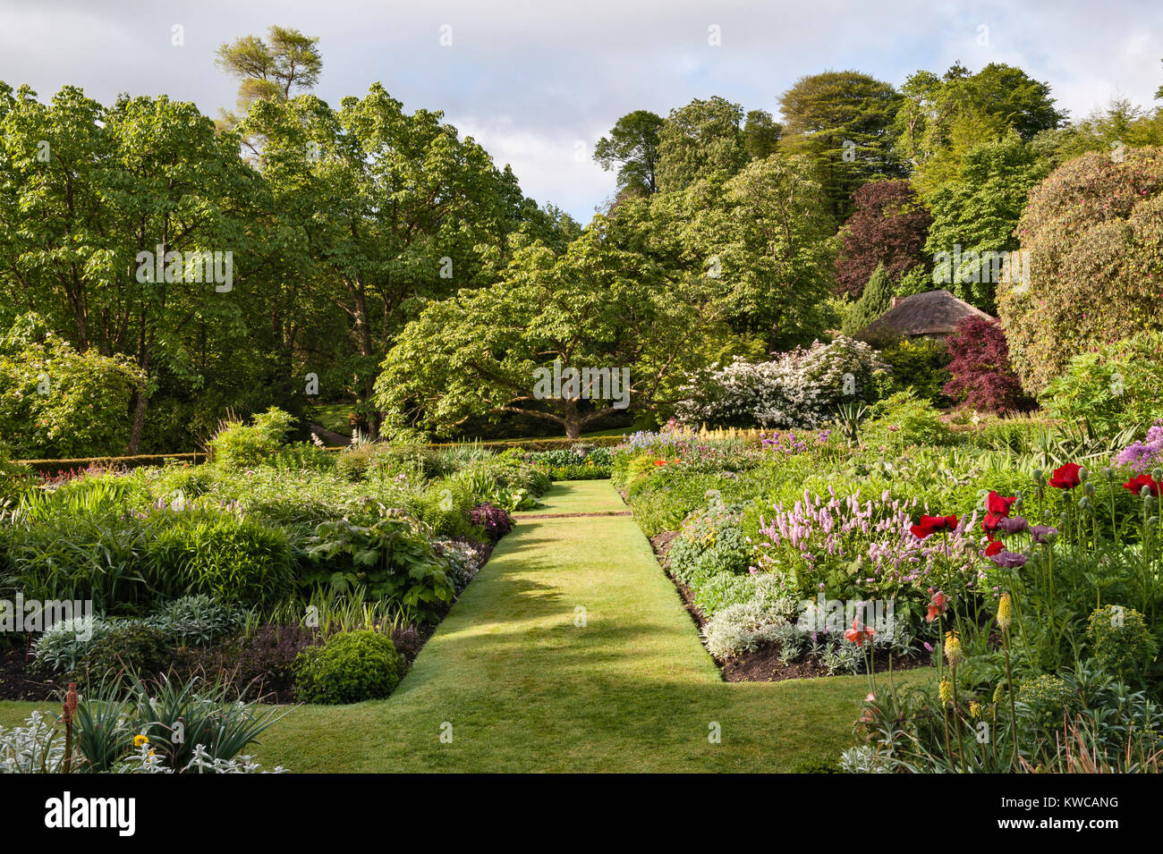 Lanhydrock, Bodmin, Cornwall, UK. The gardens in summer - Stock Image