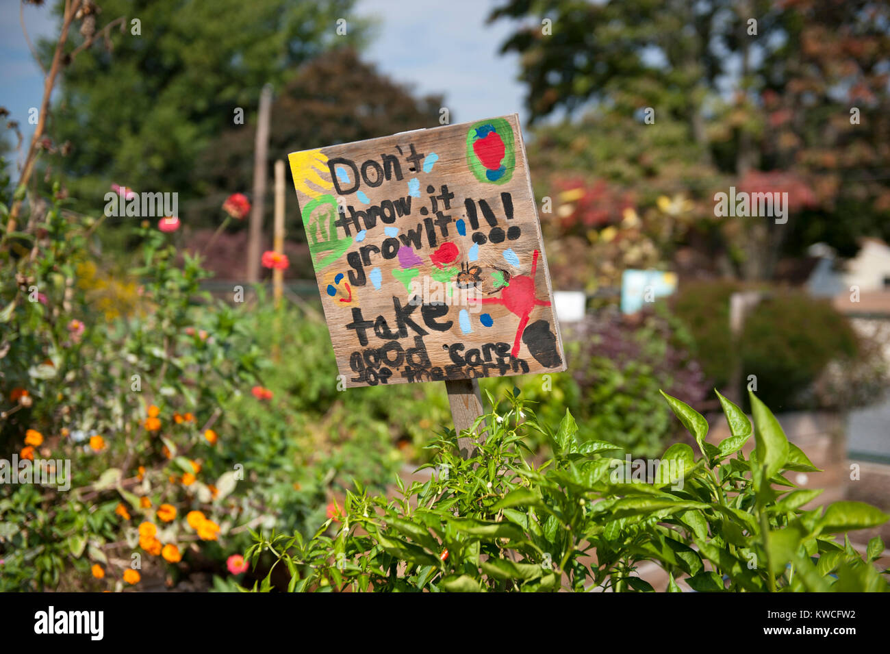 SIGN IN RAISED BED GARDENS IN SCHOOL YARD - Stock Image