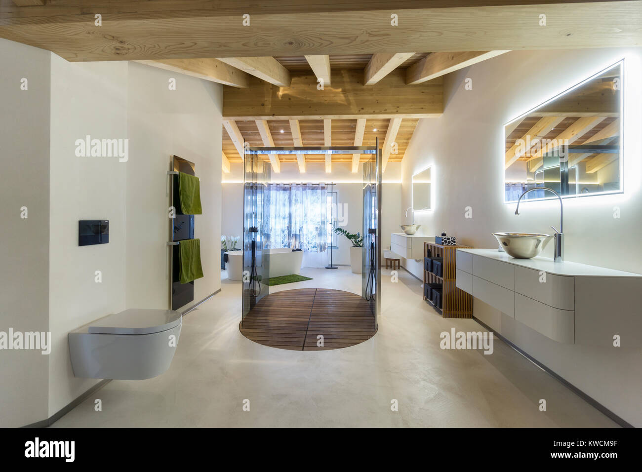 luxury bathroom with shower and wood ceiling - Stock Image